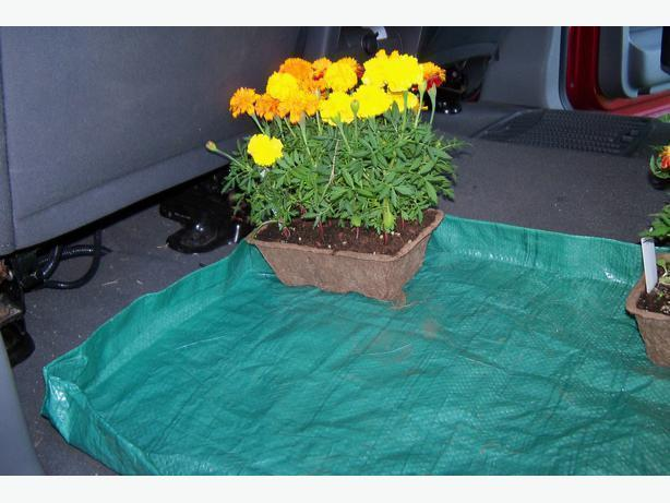 Three Plastic mats to keep your car trunk clean when hauling plants
