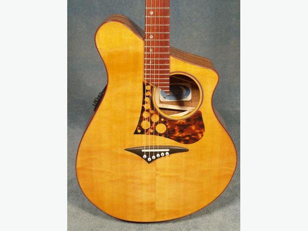 Custom-Made Acoustic Guitar