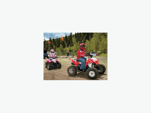 ATV Safety Flag