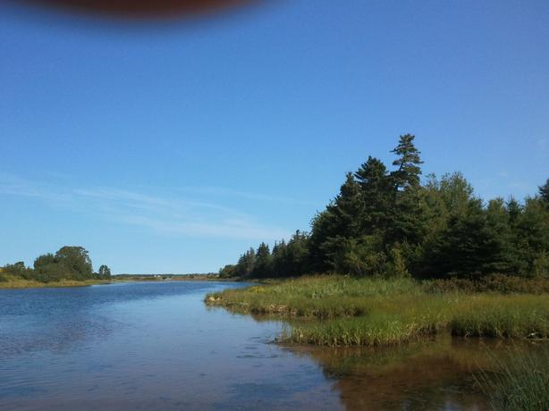20 ACRES FOR SALE IN MARIE ON THE RIVER