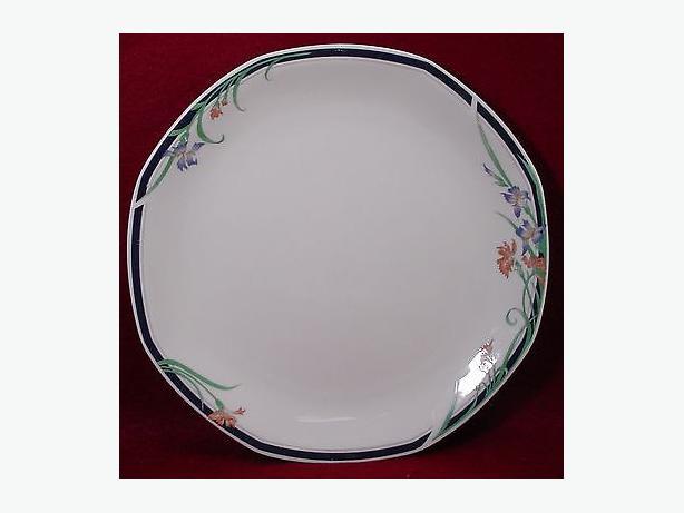 WANTED: Royal Doulton Juno Dinner Plates