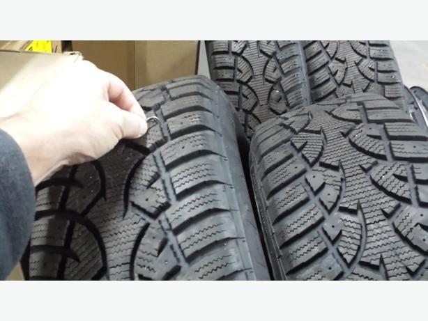Altri Max Arctic Winter Tires on Rims