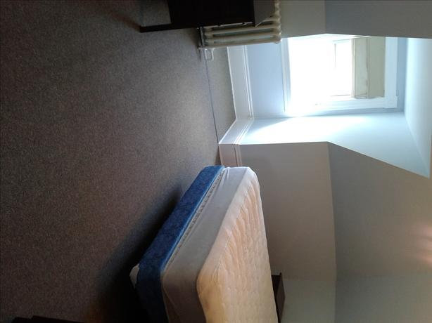 Just renovated sunny 1 bed apartment, WiFi, includes everything!