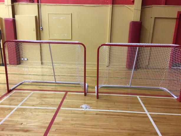 Hockey Nets (2)
