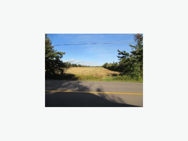 7 acres on paved road 20 minutes east of Ch'town