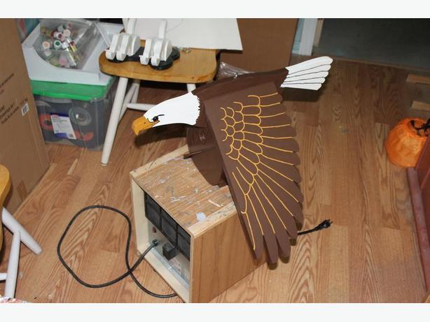 American Eagle Bird House
