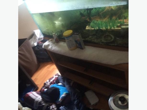 40gallon fresh water fish tank