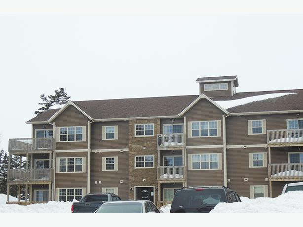 Available November 517-521 Malpeque Road Suites Cute 1 bedroom In Charlottetown